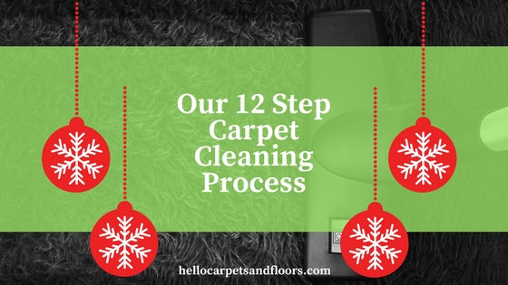 Our 12 Step Carpet Cleaning Process
