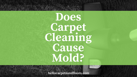 Does Steam Cleaning Cause Mold?